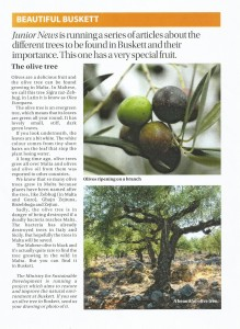 Times of Malta Junior News 18-03-2015