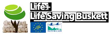 Life Saving Buskett